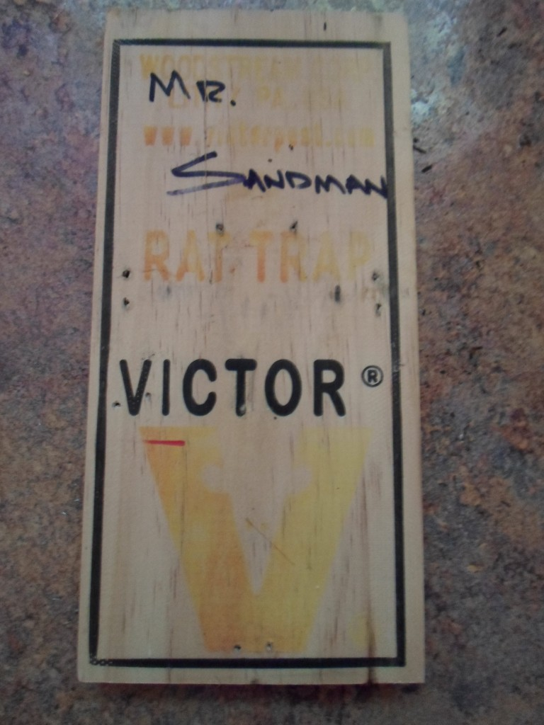 Victor Mr. Sandman